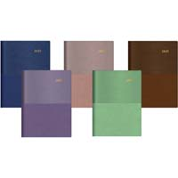 COLLINS 2020 VANESSA DIARY MONTH TO VIEW A5 ASSORTED